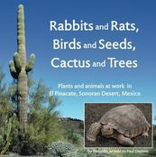 Desert ecology thru the eyes of a tortoise