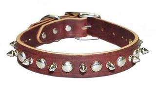 Spiked & Studded Latigo Collar
