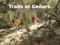 Link to Trails of Colwell Cedars pages.