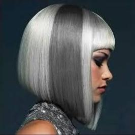 Hair Color Studios Hair Services Hilite Grey Coverage Dimensional