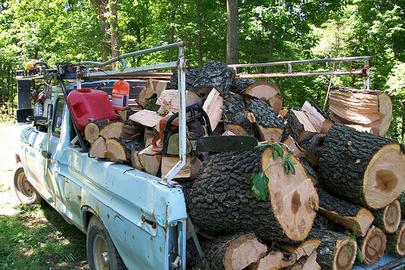 Excellent Log Removal Service in Lincoln NE | LNK Junk Removal