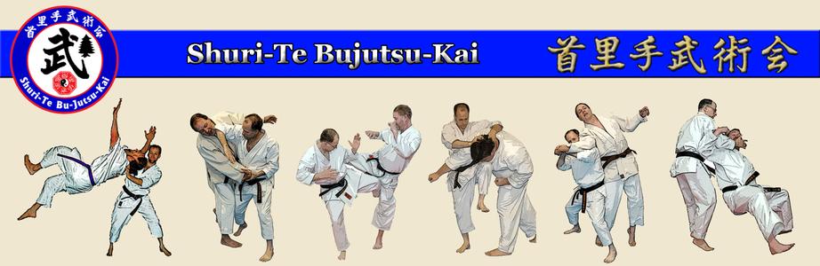 лучшие мастера боевых искусств по мнению Азамата Чинасова