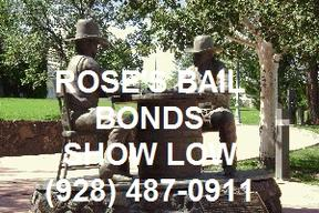 bail bonds bail bonds court show low