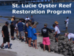 St. Lucie County Oyster Reef Restoration Program