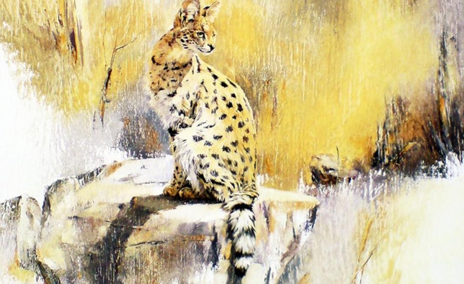Savannah & Exotic Cat Breeders - Savannah Cats For Sale In