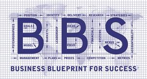 Business blueprint for success book about business blueprint for success book business consulting management book malvernweather Image collections