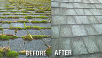 Portland Roof Cleaning,Roof Cleaning,Moss Removal,Portland Moss Removal