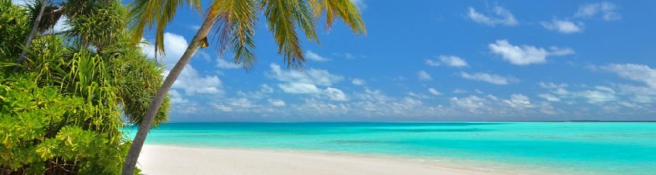 Banner of Cook Islands Real Estate web site