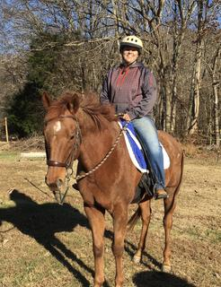 Colby's Army photo of the chestnut off-track Thoroughbred therapy horse Braxton (Hard to Handle)