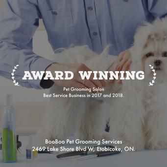 Booboo pet grooming services dog grooming cat grooming httpsthreebestratedpet grooming in toronto on solutioingenieria Choice Image