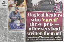 healer, miracle man, magic man, reiki, psychic surgery, animals, daily mail, horses, dogs, homeopathy, reiki master, incurable, magic, vets, near death,