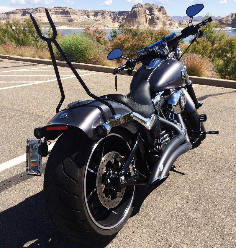 Harley Amp Custom Bike Pics Ginz Choppers