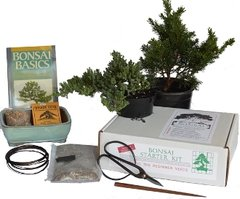 Bonsai Beginner Kit