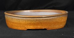 Gold/Brown Oval Pot 12""