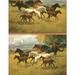 Horse Lovers Gift Wrapping Paper - 100 Ft Roll