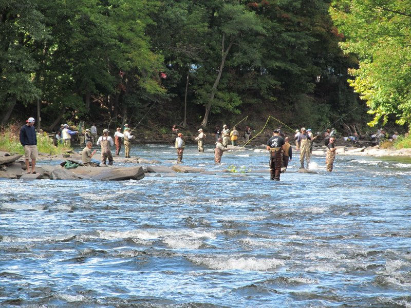 Sites with different or common products barry tackle for Salmon river pulaski ny fishing report
