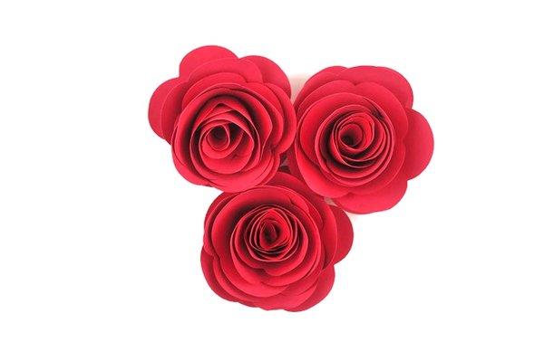 paper roses for sale Sizzix puts creativity in your hands with the craftiest die cutting machines, die cutting tools, accessories, and embossing equipment in the arts and craft industry.