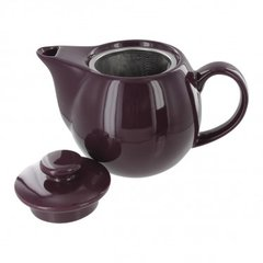 Teaz Purple Tea pot with stainless steel infuser 14 oz size