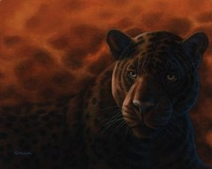 "Jaguar 16 x 20"" Signed and Numbered giclée on paper"