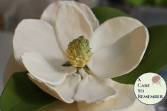 Gumpaste Magnolia for Cake Decorating or wedding cake toppers
