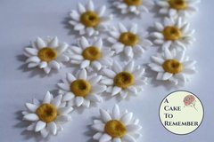 12 gumpaste daisies for cake decorating, cupcake decorating, cake pops. Wedding cake toppers, gumpaste flowers.