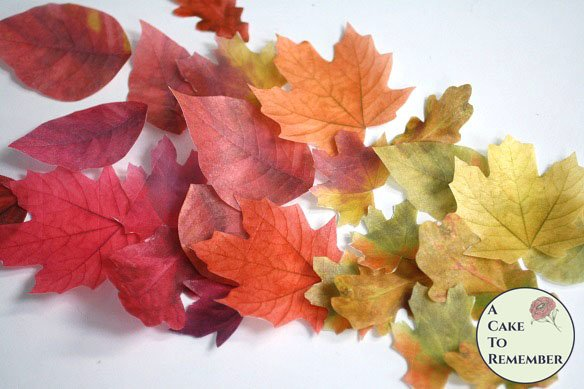 15 Wafer paper edible leaves for cakes. Assorted sizes. Fall wedding cake topper leaves.