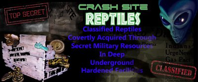 Crash Site Reptiles