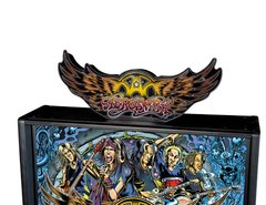 STERN AEROSMITH TOPPER