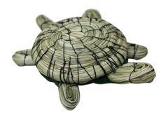 Small Sweet Grass Turtle