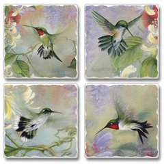 Nature's Gift of Feathers Hummingbird Absorbent Coaster Set