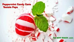 Limited Edition Peppermint Candy Tootsie Pops