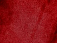 HD06 - Claret - SPECIAL