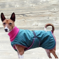 Winter Dog Coat with Tummy Panel and Turtleneck