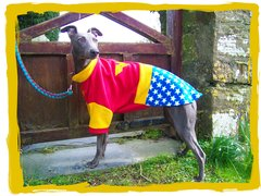 Superhero / Character Dog Fleece Jumper