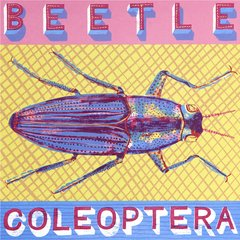 ALICE PATTULLO: B IS FOR BEETLE