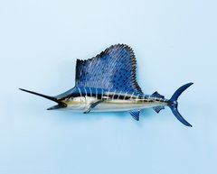 Sailfish14""
