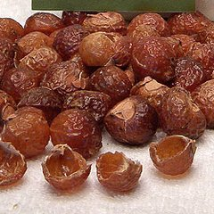 Organic Soap Nuts- Nature's Laundry Solution