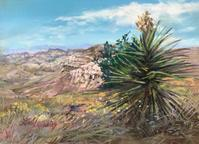 Desert Canyon Color, 5x7 pastel miniature by Lindy Severns