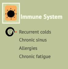 Immune support at Ondol Clinic