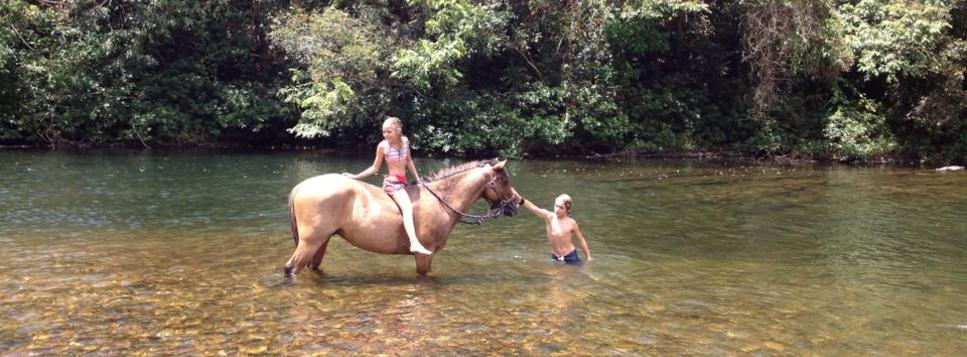 Two young kids and a horse play in the river on a horse back riding adventure in Belize. Belize Adventure Tours