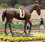 Larger than life size bronze Seabiscuit