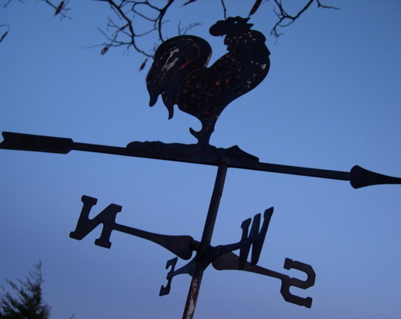 rooster-shaped weathervane in lavender dawn