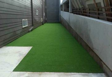 Artificial Dog Turf Texas