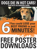 Dogs die in hot cars free poster download