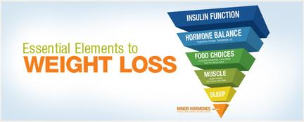Essential Elements to Weight Loss