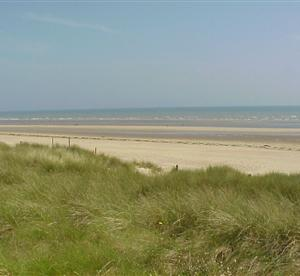 d day beaches bed and breakfast