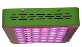 grow your fronto leaf -led grow lights