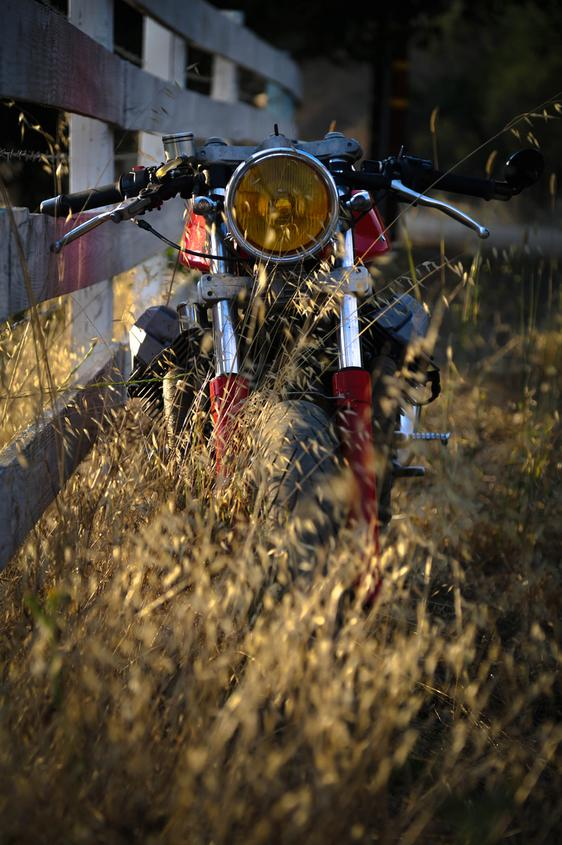 moto guzzi motorcyle nature lovers forest landscape