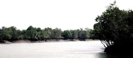 Sundarban National Park Tour Packages
