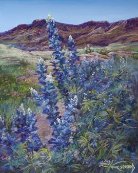 Tall Texas Blues, Big Bend bluebonnets by Fort Davis TX painter Lindy C Severns, Old Spanish Trail Studio
